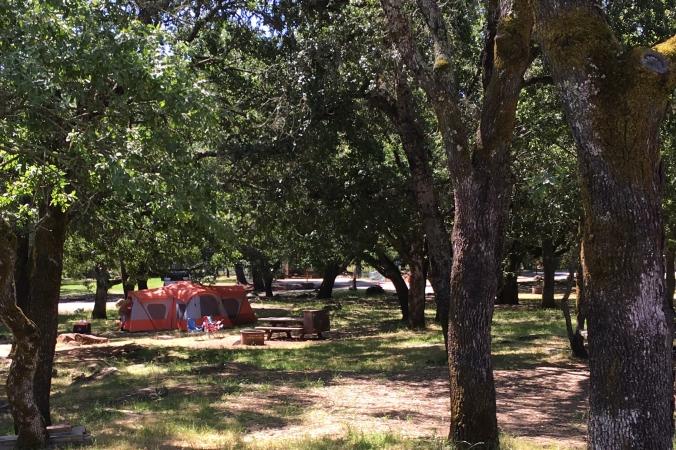 Camping at Spring Lake